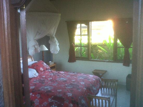 Sawah Sunrise Bed & Breakfast: Room as sun beginning to rise