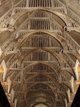 Harry potter ceiling
