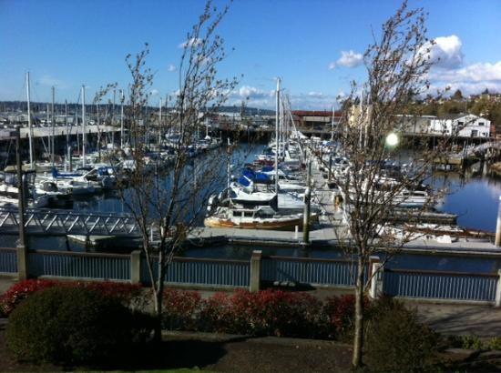 Inn At Port Gardner: Marina view from room