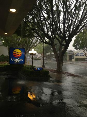 Comfort Inn Near Pasadena Civic Auditorium: beautiful rainy day