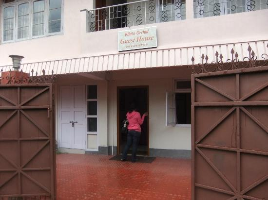 White Orchid Guesthouse.: Front of guest house
