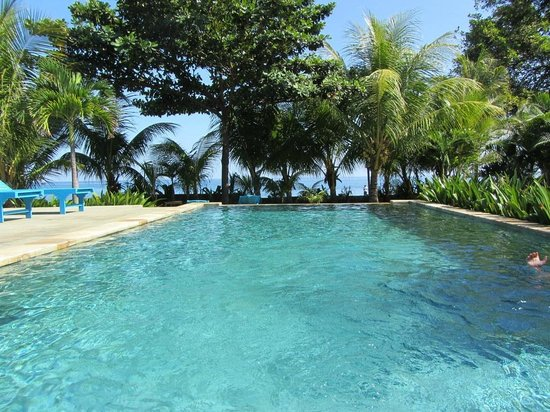 1000 Dream Bungalow - Lovina: Pool with the ocean view