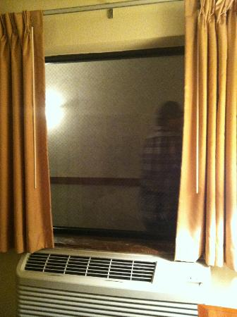 Quality Inn Waukegan: our &quot;window&quot; with a hallway view as someone walks by