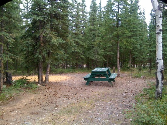 Sourdough Campground: Private wooded tent sites