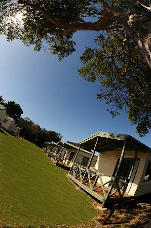 Bargara Beach Caravan Park: Cabin Accommodation