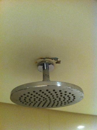 Oakwood Residence Beijing: my beautiful shower head cracking a little more everytime i would turn the water on