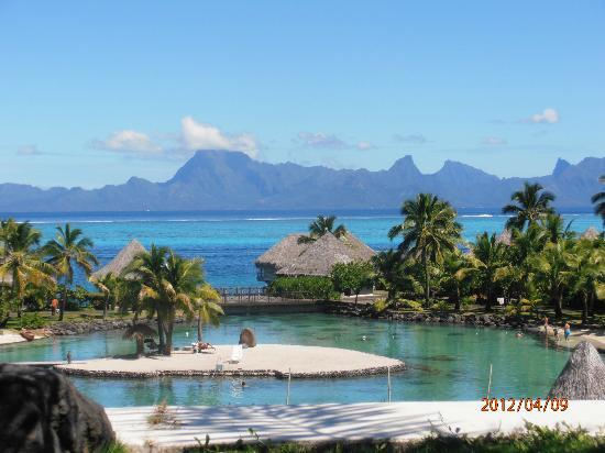 Faa'a, Fransk Polynesien: Picture Perfect Postcard View of Hotel and Moorea from lobby and restaurant