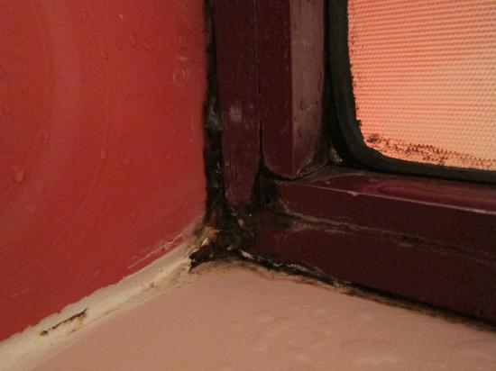 Zayed Hotel: Mold on shower door in room 711.