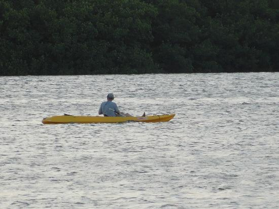 Gulf View Waterfront Resort: Free kayak & canoe usage!