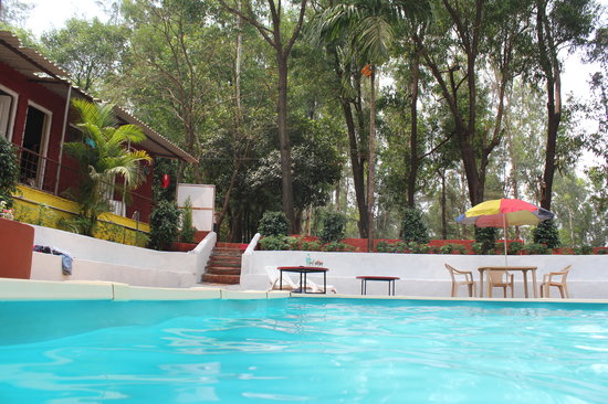 The Jungle Resort Amba