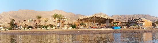 Nakhil Inn & Dream - Nuweiba: your second home