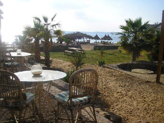 Nakhil Inn & Dream - Nuweiba: breakfast view