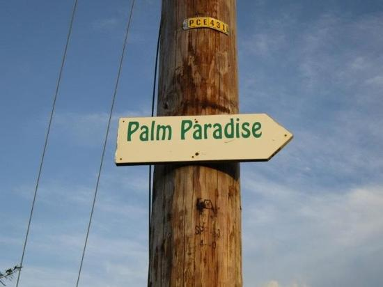 Palm Paradise Guest House + 2 Apartments: verso paradise