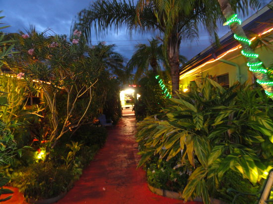 Whispers Resort at Treasure Island: Tropical Courtyard at Night