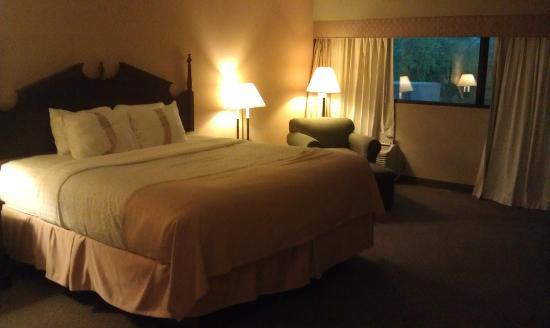 Holiday Inn Wichita Falls (At the Falls): Room 306