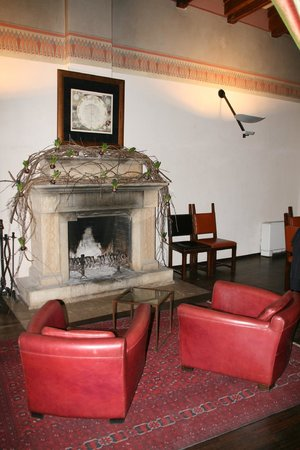 Hotel Copernicus: Fireplace and library