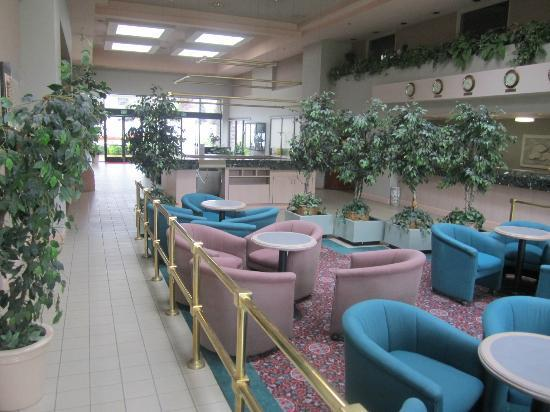 Ramada Inn Silicon Valley: Lobby looks like something from the 80s
