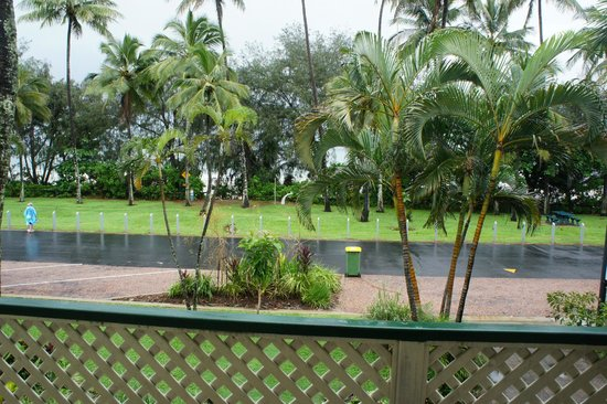 Port Douglas Beachfront Terrace: view from ground floor apartment