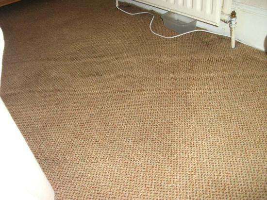 Garden Lodge Hotel: Sodden carpet and tray verifying there is a leak with the radiator.