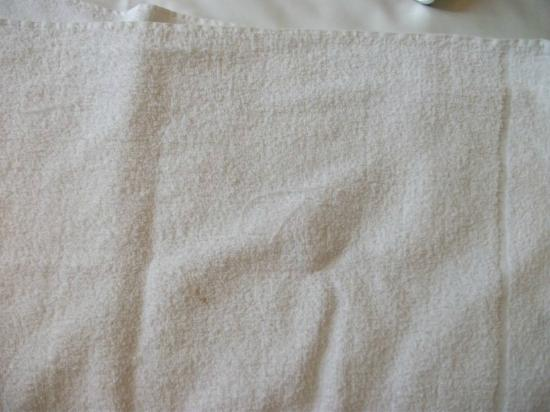 Garden Lodge Hotel: Dirty stains on worn towels.