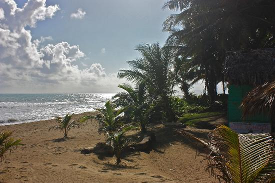 Hotel Celuisma Cabarete: Early morning at the beach