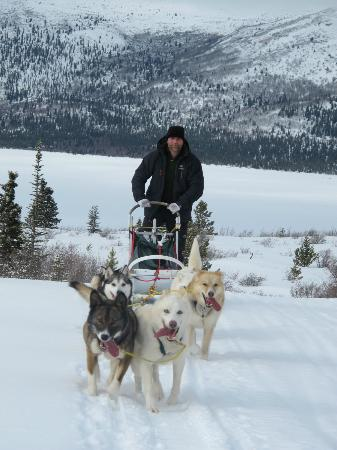 Sky High Wilderness Ranch: Dog Mushing.