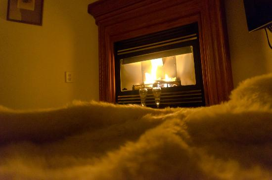 Bearskin Rug Fireplace Images - Reverse Search