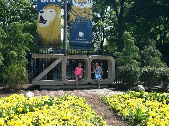 National Zoo sign - Picture of National Zoological Park ...
