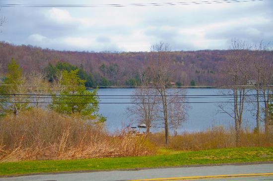Starrucca, PA: View from the front of the house toward the lake