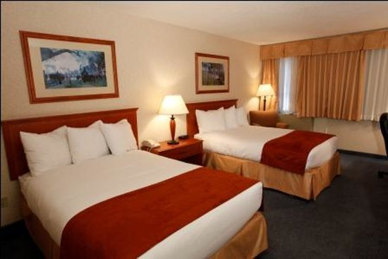 Comfort Inn & Suites Conference Centre: Guest Room