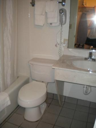 Econo Lodge Inn & Suites: Bathroom