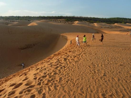  : red sand dune sliding down the slopes