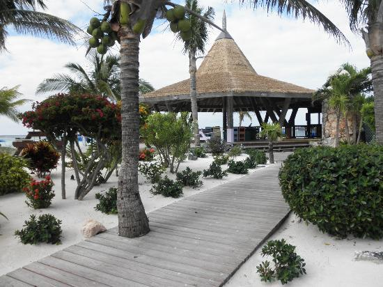 Marsh Harbour, Great Abaco Island: Beach bar
