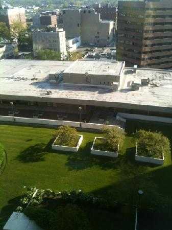 Springfield Marriott: view of courtyard from room