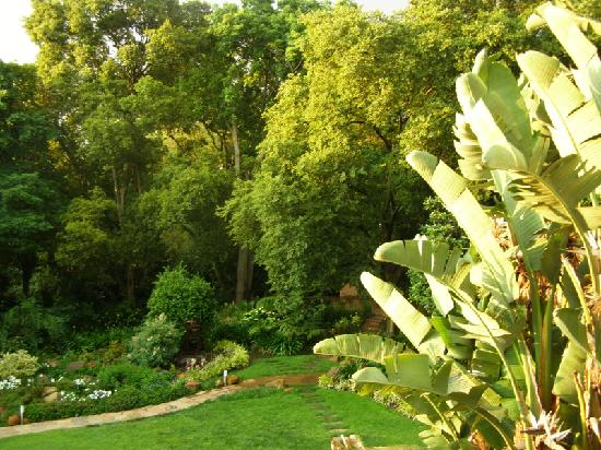 The Oasis Luxury Guest House: Garden