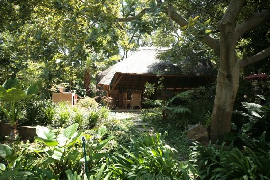 The Oasis Luxury Guest House: Lapa