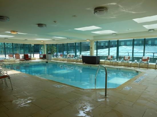 Indoor Pool Area Picture Of Renaissance Baltimore