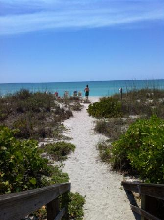 The Beach on Longboat Key: pathway to beach