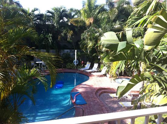 Lush Tropical Pool Paradise Picture Of The Worthington