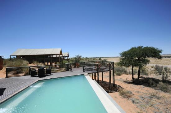 ‪Suricate Kalahari Tented Lodge‬