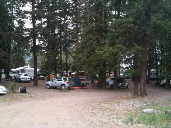 Sunset Bay RV Resort: Forested sites