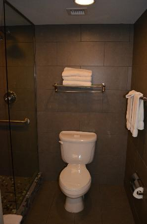 BEST WESTERN PLUS Sundial: toilet and shower area