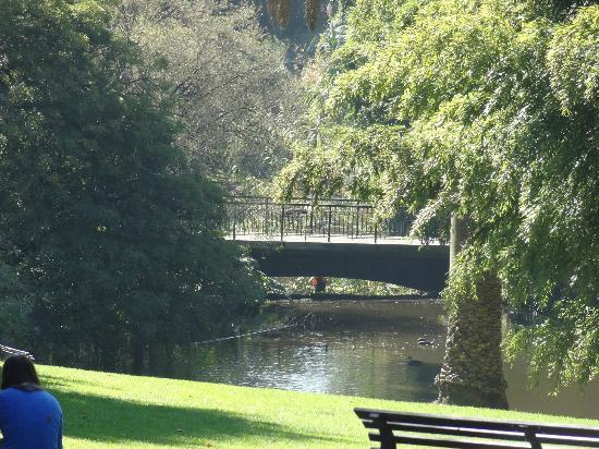 City view picture of royal botanic gardens melbourne for Garden pond melbourne