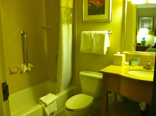 Hampton Inn &amp; Suites Milwaukee Downtown: Bathroom