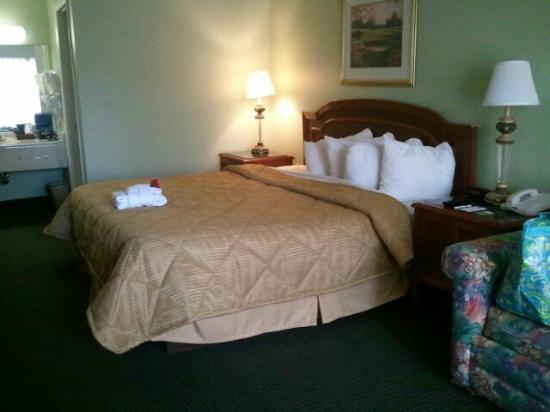 Quality Inn & Suites Hilton Head: king room