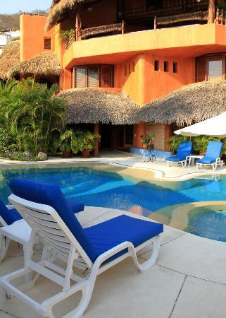 Villa Carolina Hotel: Pool and Suite