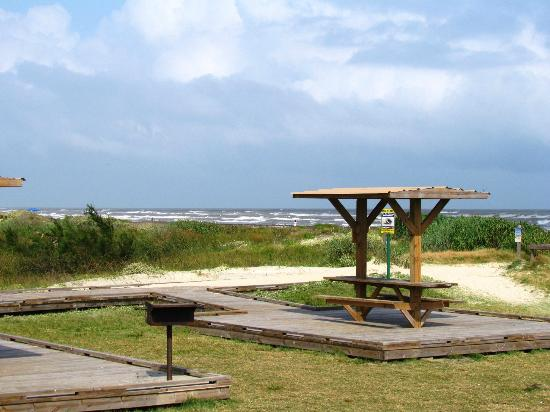 Picnic area for Island beach state park fishing report