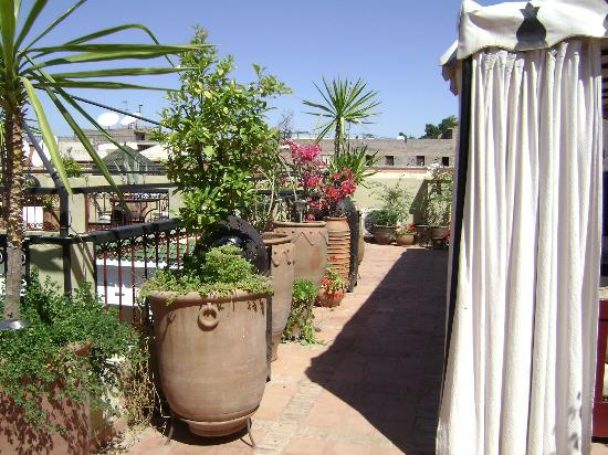 Riad Africa: Roof Terrace