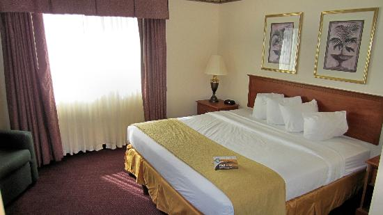 Quality Inn & Suites: Bedroom of King Suite
