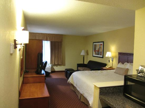 Hampton Inn Lacrosse Onalaska: King room view from door